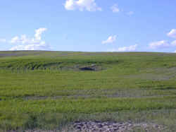 Coal Subsidence in Rancher's Field