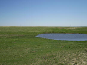 Prairie pothole excavated for use as a stock pond
