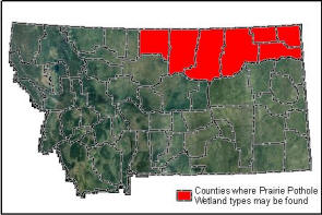 Distribution Map of Prairie Potholes